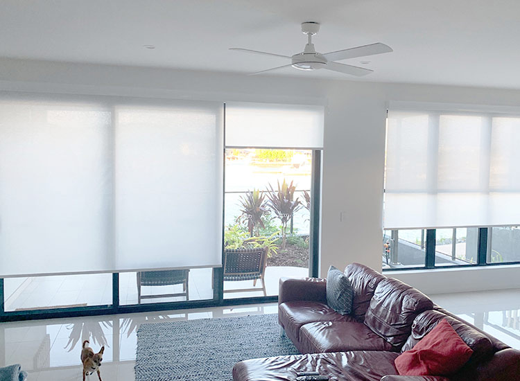 Light Filter Roller Blinds