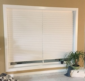 Temporary Blinds